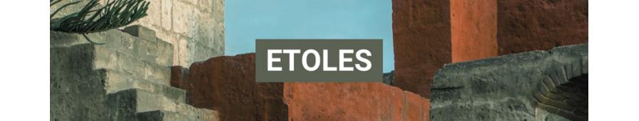 Etoles laine Alpaga Le Monde - Nos plus belles Etoles en Alpaga